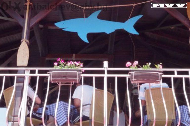 Акула от стиропор